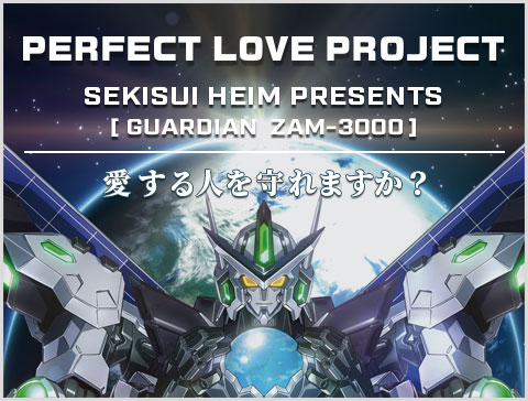 PERFECT LOVE PROJECT